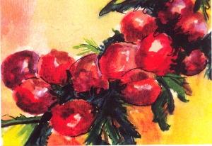 Winter Berries by Deena Sackman